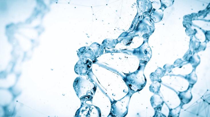 AquaUro e AquaEndo